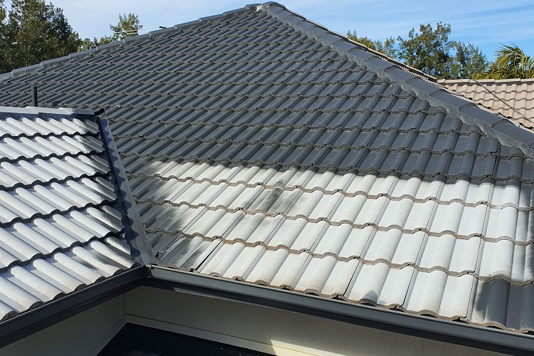 Residential Roof Painting Sydney